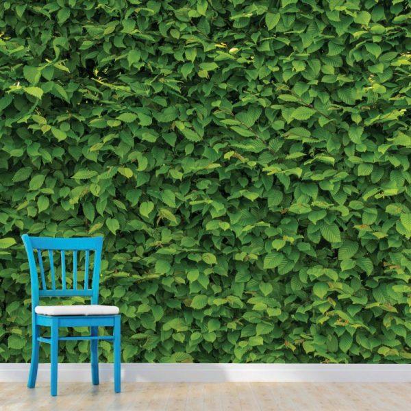 Mural de parede Folhagem intensa em vinil autocolante decorativo. Aplique esta imagem em qualquer superfície lisa e sem textura. Além disso, ao contrário do papel de parede tradicional, não precisa aplicar colas.
