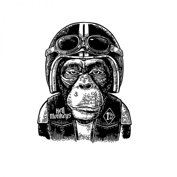 macaco motar t-shirt pormenor